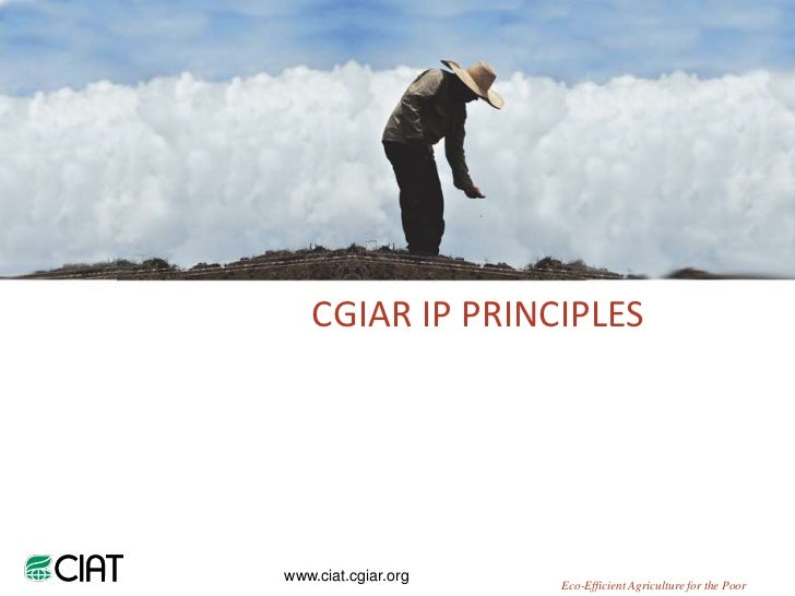 CGIAR IP PRINCIPLESwww.ciat.cgiar.org                     Eco-Efficient Agriculture for the Poor