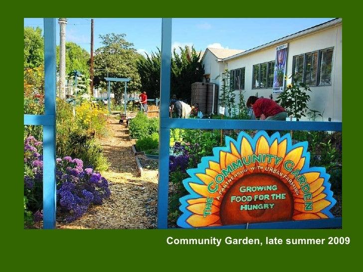 Community Garden, late summer 2009