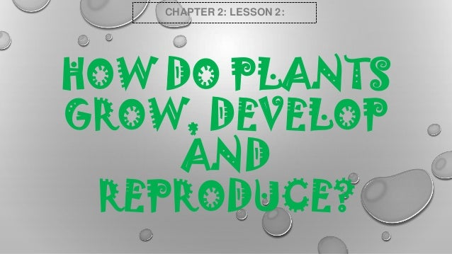 CHAPTER 2: LESSON 2:  HOW DO PLANTS GROW, DEVELOP AND REPRODUCE?