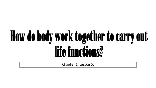 Howdobodyworktogethertocarryout lifefunctions? Chapter 1: Lesson 5: