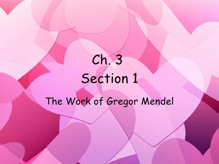 Ch.3 1 Pp2