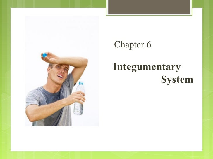 Ch. 5 integumentary system buchanan (with updates)