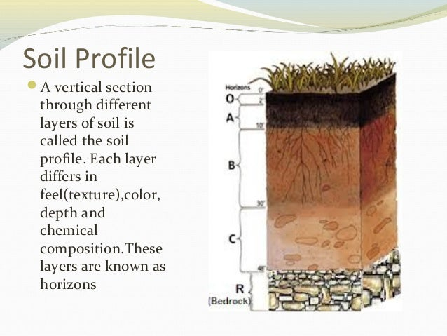 Ch 9 soil for What is important to know about soil layers
