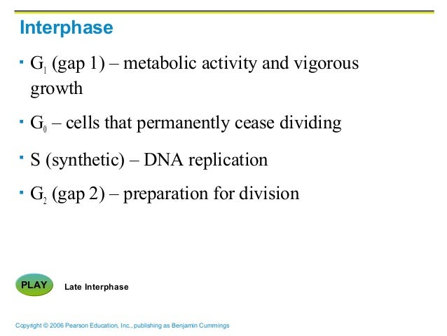 ch03 c Ch03 student: _____ 1 which of the following is not a phenotypic description of allele  c€polymorphic d€multifactorial e€pleiotrophic .