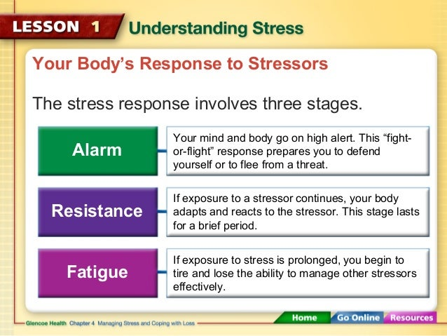 understanding the main causes of stress