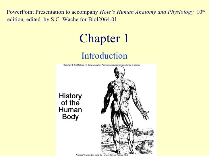 Chapter 1 Introduction PowerPoint Presentation to accompany  Hole's Human Anatomy and Physiology,  10 th  edition ,  edite...