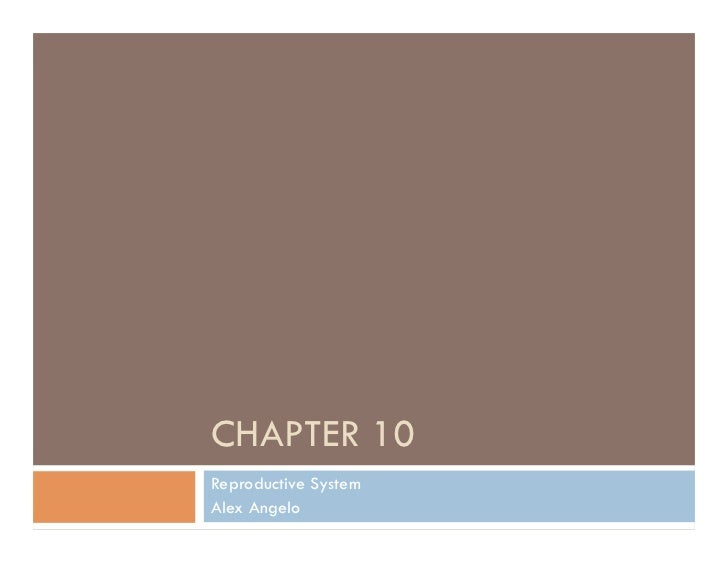 CHAPTER 10Reproductive SystemAlex Angelo
