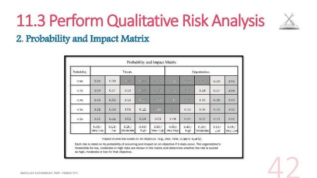 11 3 perform qualitative risk analysis 3 risk data quality