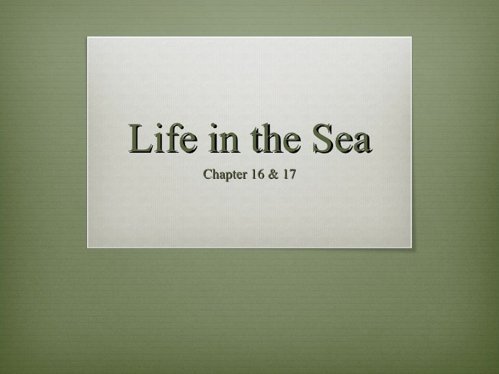 Life in the Sea Chapter 16 & 17