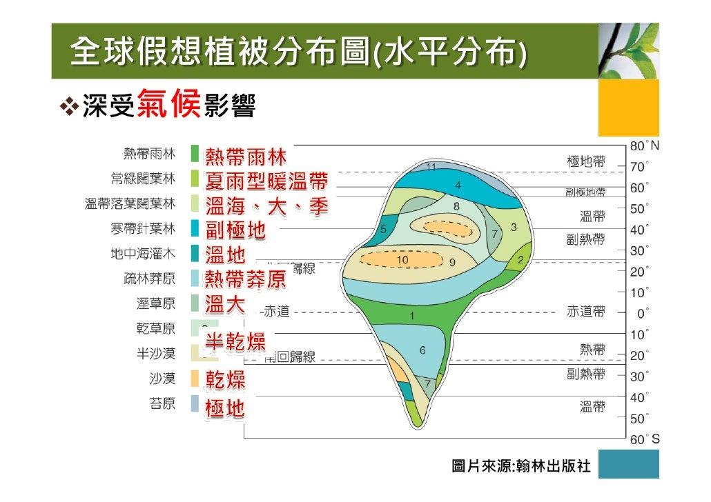 全球假想植被分布圖(水平分布) 深受氣候影響                 圖片來源:翰林出版社