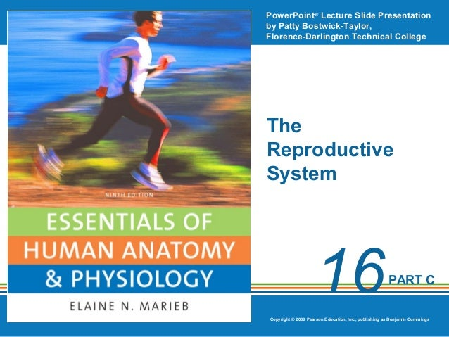 PowerPoint® Lecture Slide Presentation by Patty Bostwick-Taylor, Florence-Darlington Technical College  The Reproductive S...