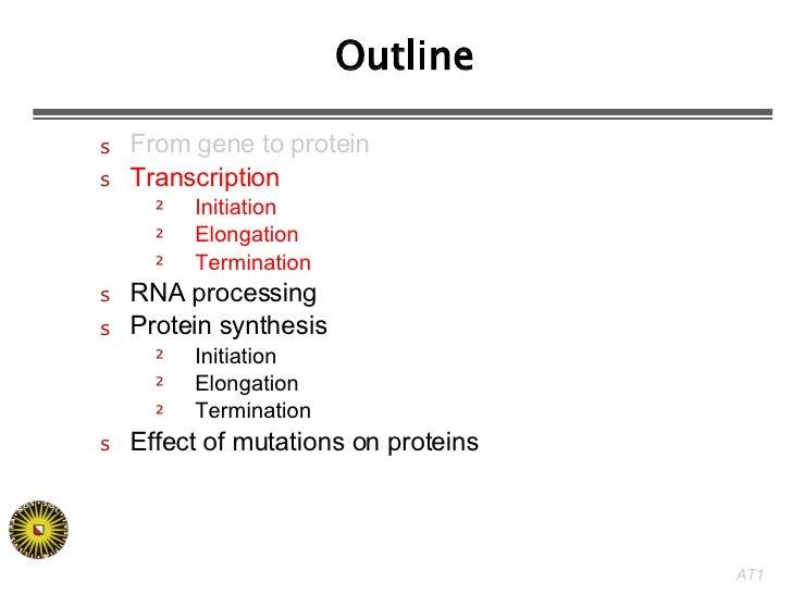 Outline <ul><li>From gene to protein </li></ul><ul><li>Transcription </li></ul><ul><ul><li>Initiation </li></ul></ul><ul><...