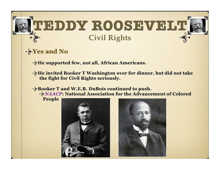 theodore roosevelt and progressivism essays Roosevelt and wilson essays comparing and contrasting theodore roosevelt and woodrow wilson presidencies and argue if their progressive beliefs matched their policies.