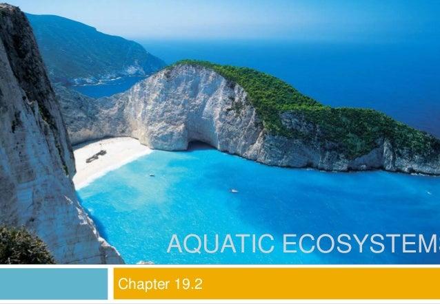 Chapter 19.2 AQUATIC ECOSYSTEMS
