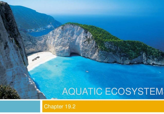 Chapter 19.2: Aquatic Ecossytems