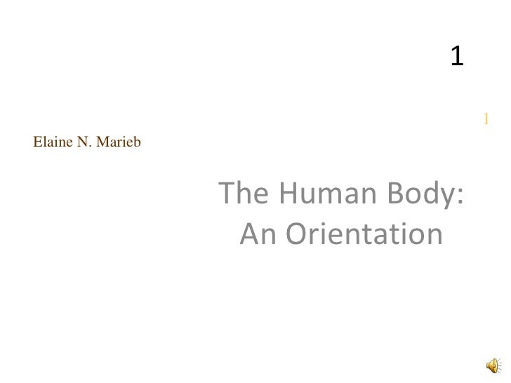 1                                     1Elaine N. Marieb                   The Human Body:                    An Orientation