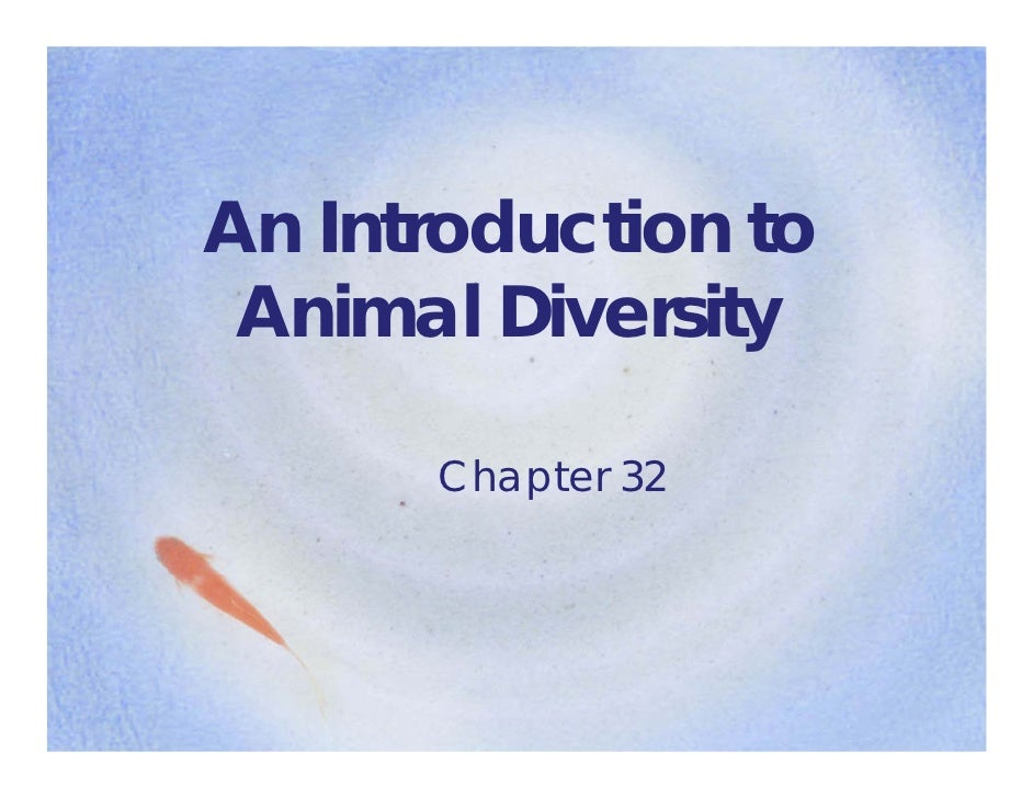 Ch 32   intro to animal diversity 10-11 [compatibility mode]