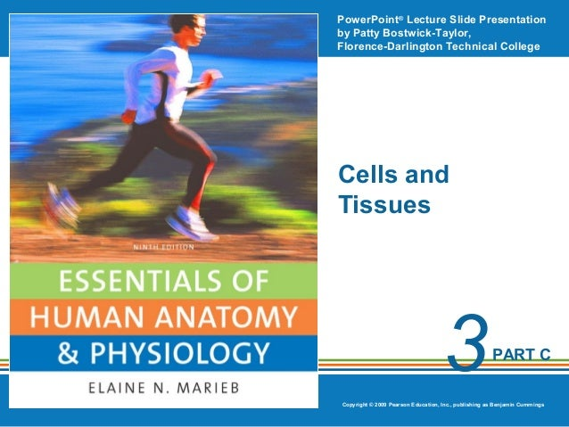 PowerPoint® Lecture Slide Presentation by Patty Bostwick-Taylor, Florence-Darlington Technical College  Cells and Tissues ...