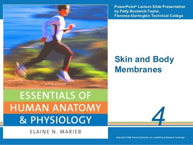 PowerPoint® Lecture Slide Presentation by Patty Bostwick-Taylor, Florence-Darlington Technical College  Skin and Body Memb...