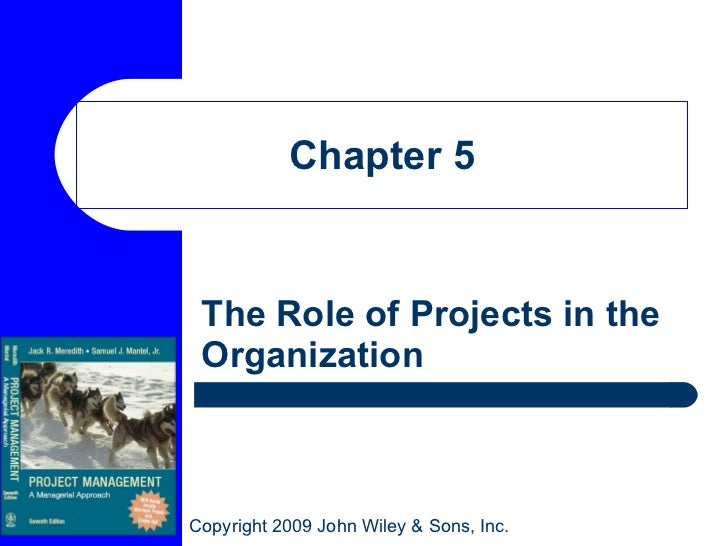 Chapter 5 The Role of Projects in the Organization