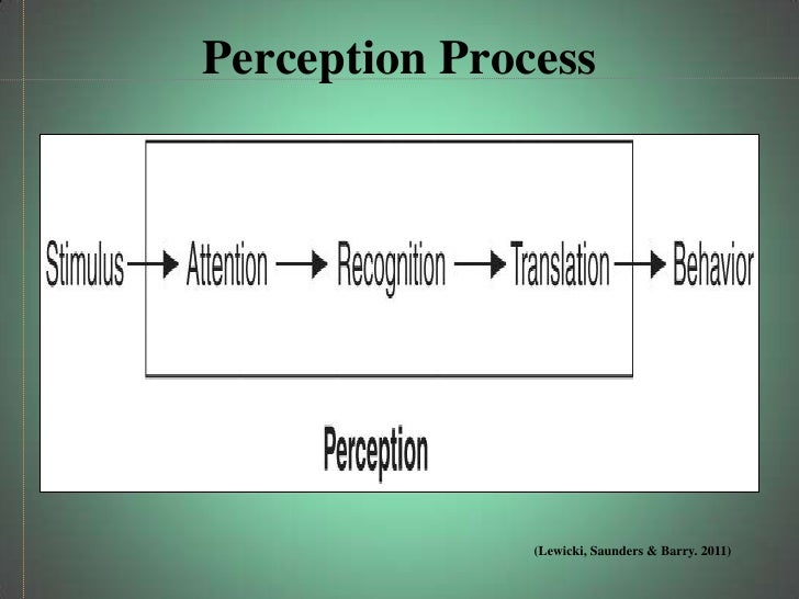 common errors in our perception of Common perception errors common  when we judge someone on the basis of our perception of the group to  documents similar to 36464125 perception errors.