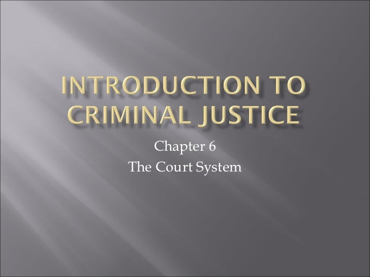 Chapter 6The Court System