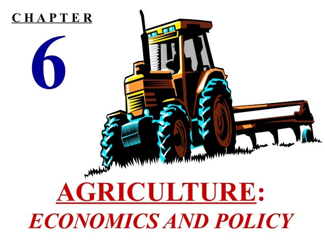CHAPTER  6  AGRICULTURE: ECONOMICS AND POLICY