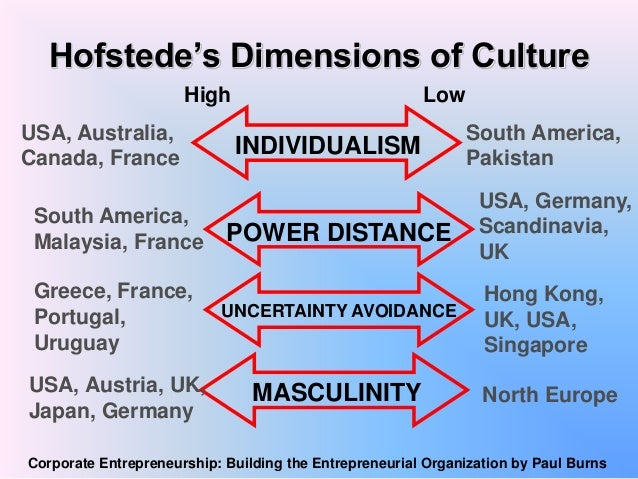 cultural profile hofstedes 5 dimensions essay
