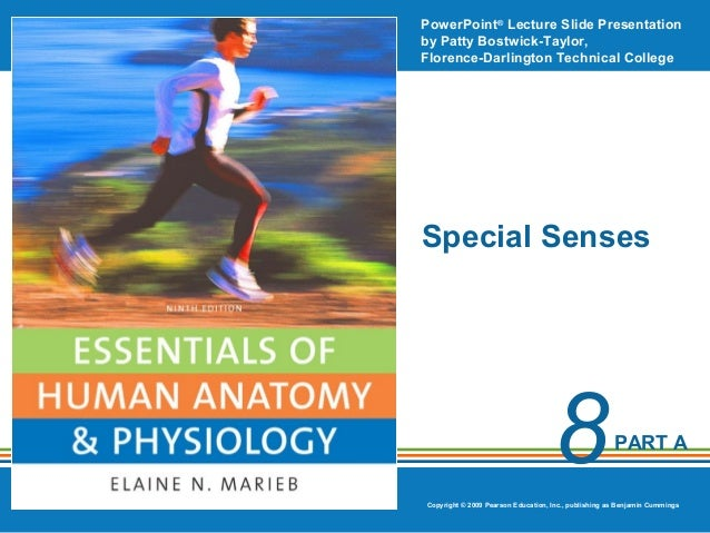 PowerPoint® Lecture Slide Presentation by Patty Bostwick-Taylor, Florence-Darlington Technical College  Special Senses  8 ...