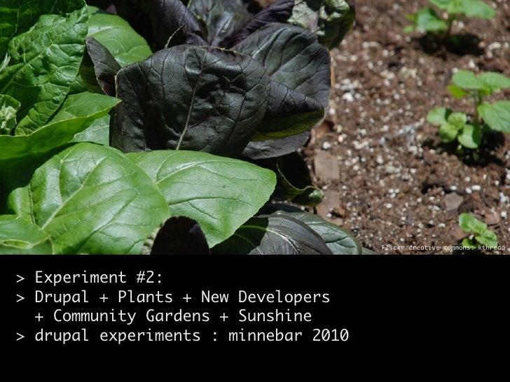 Flickr creative commons: kthread     > Experiment #2: > Drupal + Plants + New Developers   + Community Gardens + Sunshine ...