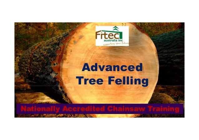 Advanced             Tree FellingNationally Accredited Chainsaw Training
