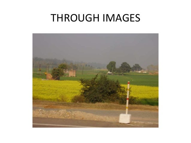 THROUGH IMAGES