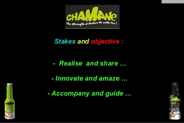 , Stakes and objective :  - Realise and share … - Innovate and amaze … - Accompany and guide …