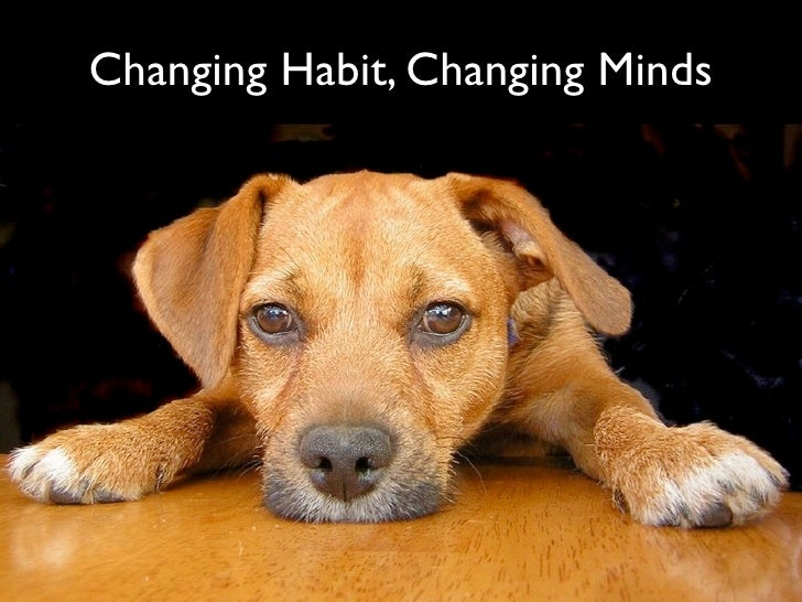 Changing Habits, Changing Minds