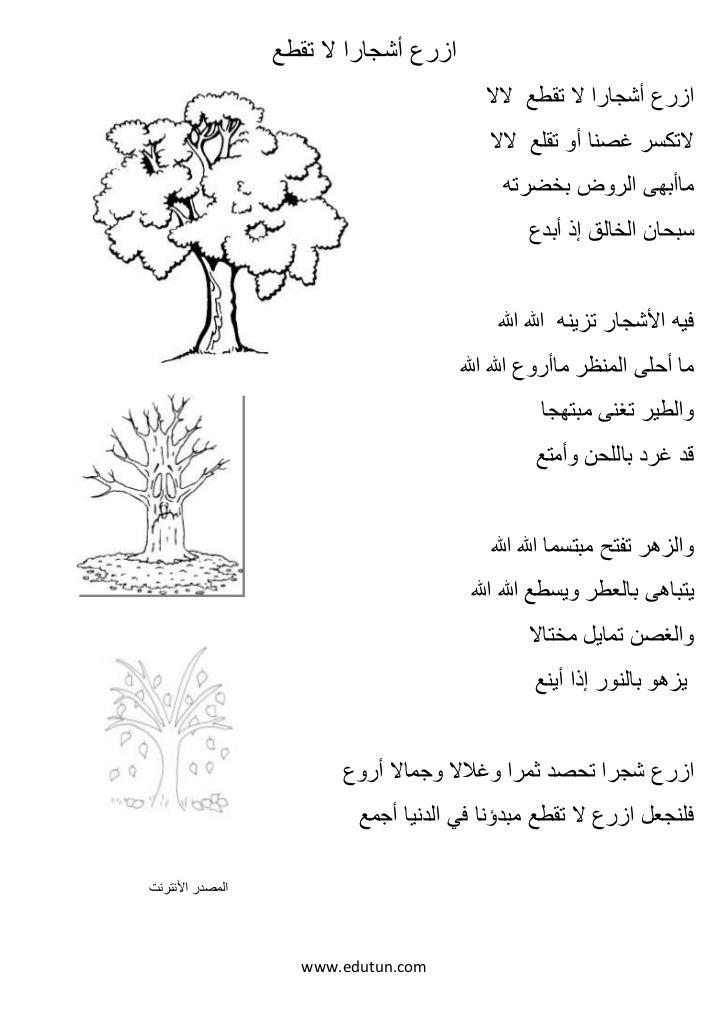 ازرع أشجارا ال تقطع                                           ازرع أشجارا ال تقطع الال                                ...