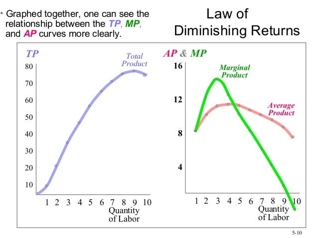 diminishing returns and labor Law of diminishing returns explains that when more and more units of a variable   law of diminishing returns helps mangers to determine the optimum labor.