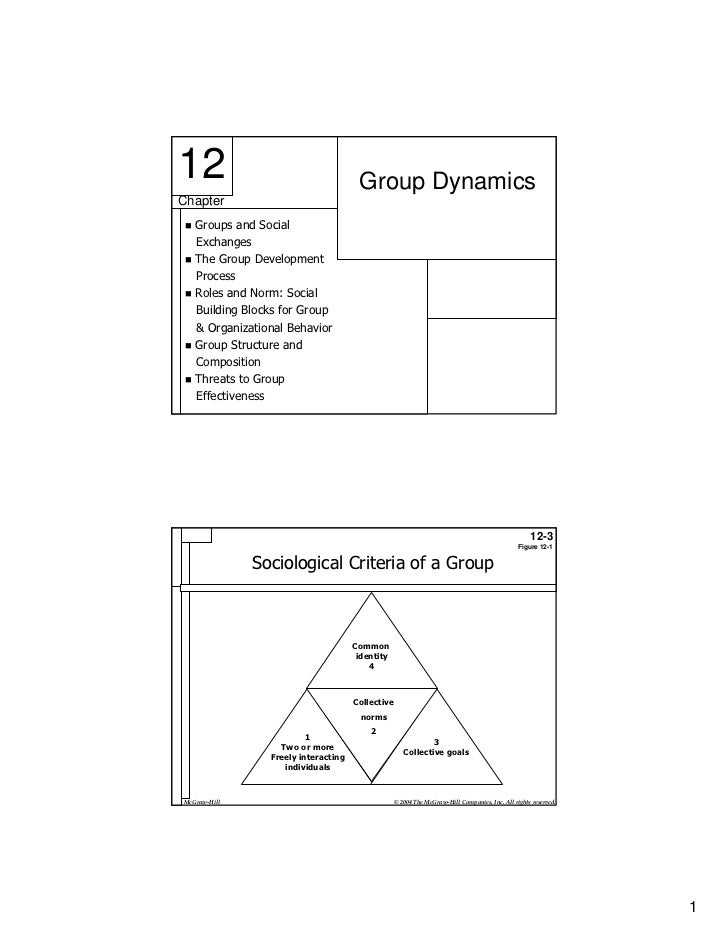 12                                    Group DynamicsChapter   Groups and Social   Exchanges   The Group Development   Proc...