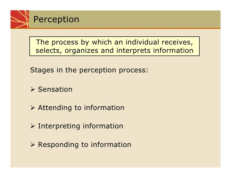 the perception of the perception process