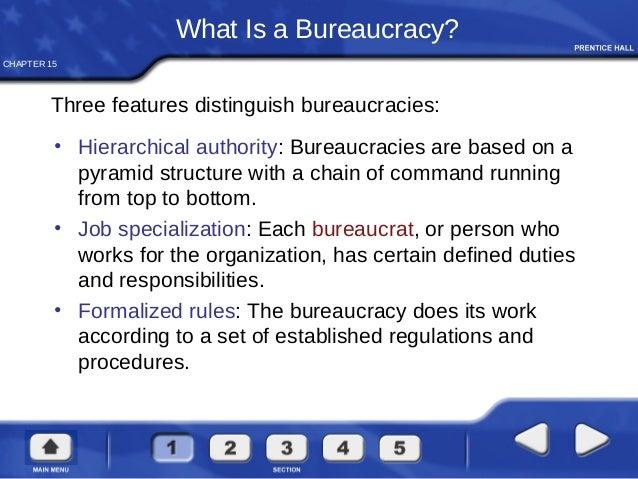 What is a Bureaucrat?