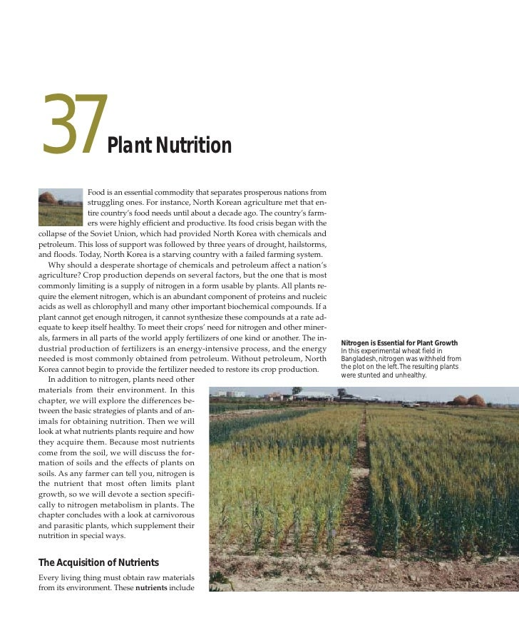 37                   Plant Nutrition                Food is an essential commodity that separates prosperous nations from ...