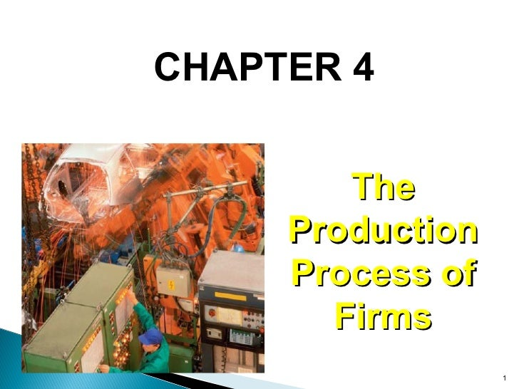 CHAPTER 4 The Production Process of Firms
