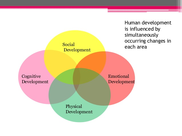 essay on human development psychology
