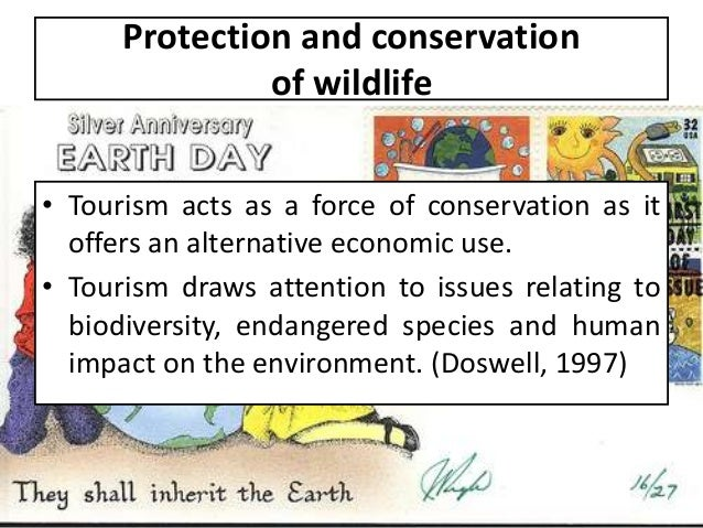effects of tourism in africa outweigh the negative effects tourism essay Eco tourism is defined as tourism that sends people to relatively untouched parts of the world and that is sensitive to the impact to nature caused by humans eco tourism is an attempt to allow tourism that does not damage nature or traditional culture.