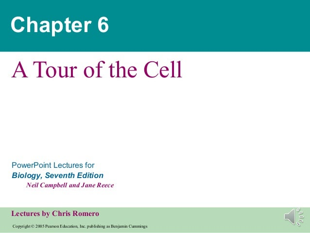 Chapter 6A Tour of the CellPowerPoint Lectures forBiology, Seventh Edition       Neil Campbell and Jane ReeceLectures by C...
