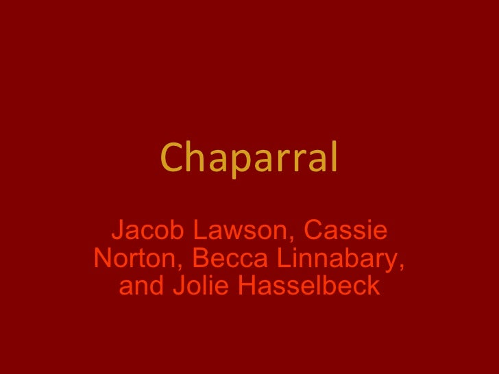 Chaparral Jacob Lawson, Cassie Norton, Becca Linnabary, and Jolie Hasselbeck