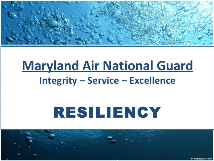 Maryland Air National Guard  Integrity – Service – Excellence     RESILIENCY