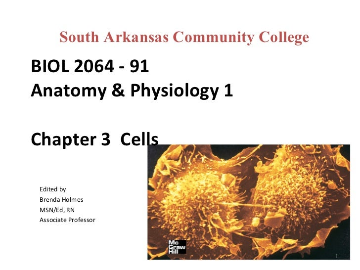 BIOL 2064 - 91 Anatomy & Physiology 1 Chapter 3  Cells  Edited by Brenda Holmes MSN/Ed, RN Associate Professor South Arkan...