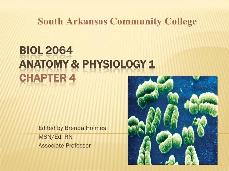 Edited by Brenda Holmes MSN/Ed, RN Associate Professor South Arkansas Community College