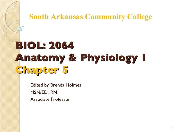 BIOL: 2064 Anatomy & Physiology 1 Chapter 5 Edited by Brenda Holmes MSN/ED, RN Associate Professor South Arkansas Communit...