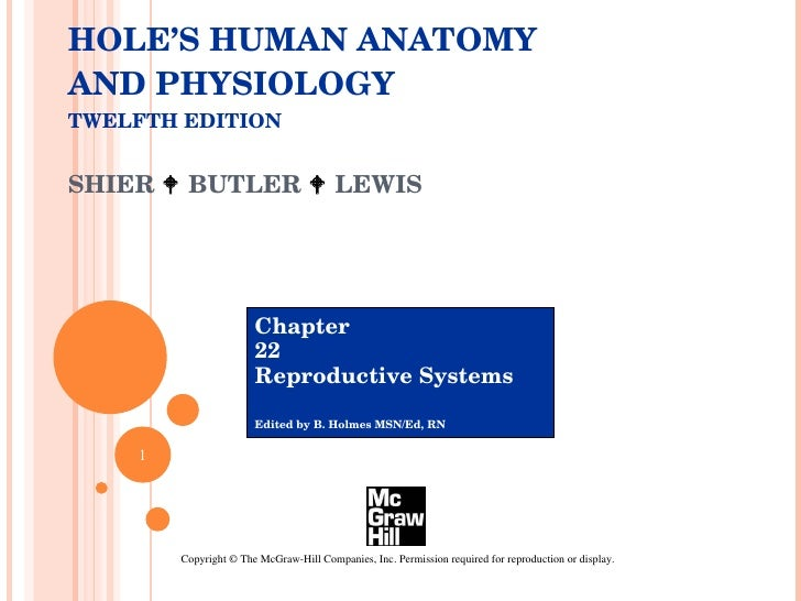HOLE'S HUMAN ANATOMY AND PHYSIOLOGY TWELFTH EDITION SHIER    BUTLER    LEWIS  Chapter  22 Reproductive Systems Edited by...
